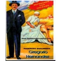 SAHUMERIOS GREGORIO HERNANDEZ SALUD
